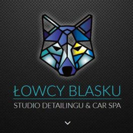 STUDIO DETAILINGU & CAR SPA